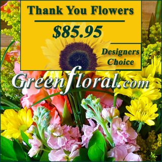 Our Designer\'s Thank Your Design Choice (85)