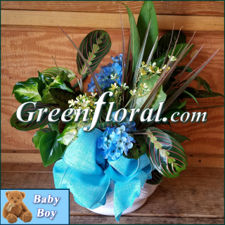 The Goodman Garden Baby Boy Designer Planter