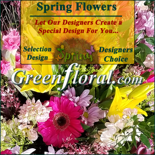 Our Designer\'s Spring Design Choice Selections Catalog