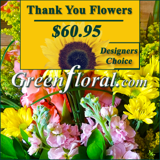 Our Designer\'s Thank Your Design Choice (60)