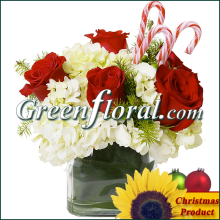 The Cameron Christmas Rose Vase Design