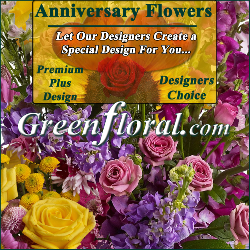 Our Designer\'s Anniversay Design Premium Plus