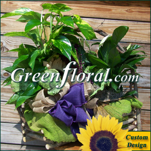 Double Plant Grapevine Log Basket (Custom Design-FF2037-04)