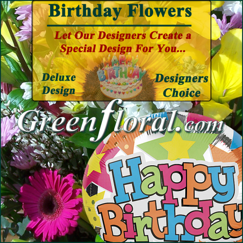 Our Designer\'s Happy Birthday Design Choice Deluxe