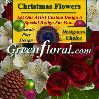 Our Designer\'s Christmas Design Choice Ultimate Plus