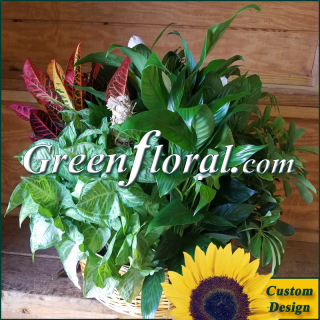 The Lake Forest Large Custom Planter Basket
