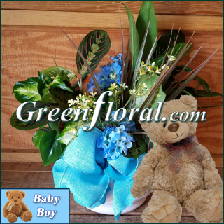 The Goodman Garden Baby Boy and Teddy Designer Planter