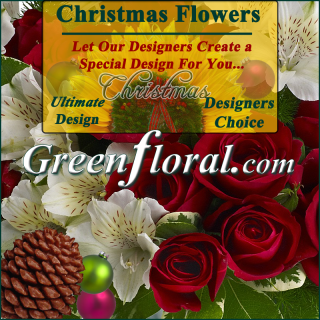 Our Designer\'s Christmas Design Choice Ultimate