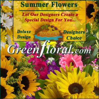Our Designer\'s Summer Design Choice Deluxe