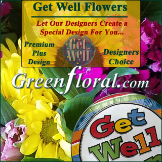 Our Designer\'s Get Well Design Choice Premium Plus
