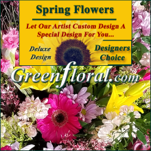 Our Designer\'s Spring Design Choice Deluxe
