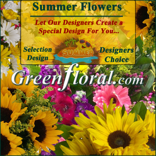 Our Designer\'s Summer Design Choice Selections Catalog