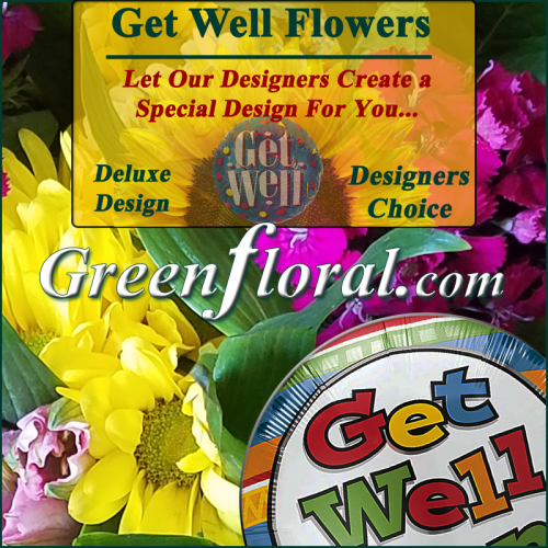 Our Designer\'s Get Well Design Choice Deluxe