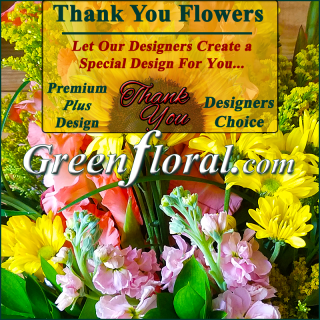 Our Designer\'s Thank You Design Choice Premium Plus
