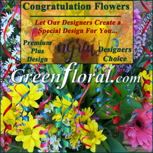 Our Designer\'s Congratulations Design Choice Premium Plus