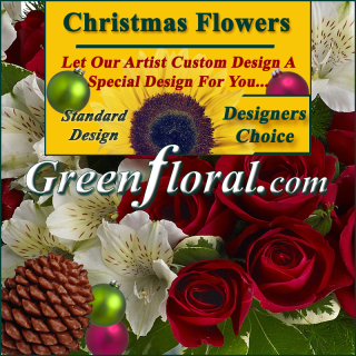Our Designer\'s Christmas Design Choice Standard