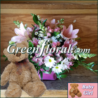 The Farmington Baby Girl Cube and Teddy Bear Design