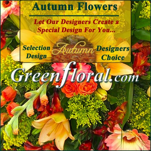 Our Designer\'s Autumn Design Choice Selections Catalog