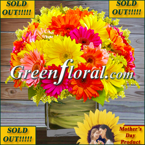 The Mother\'s Day Springrise Gerbera Cube